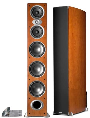 Polk Audio RTI A9 Floor Standing Speaker