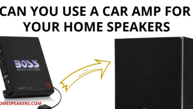 Can You Use A Car Amp For Your Home Speakers
